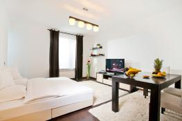 Apartament in Regim Hotelier, Cazare Apartament 2 Camere Centru 6