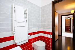 Apartament in Regim Hotelier, Cazare Apartament 2 Camere Centru 11