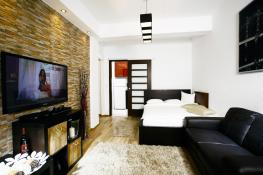 Studio Apartment Accommodation Bucharest, Short Term Rental 2